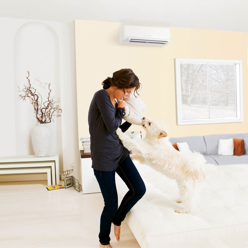 Ductless Woman With Dog
