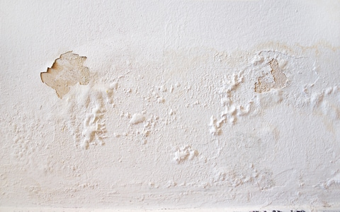 paint damage from leaking water pipe in south jersey
